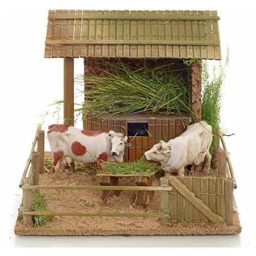 Mucche nella stalla movimento 1