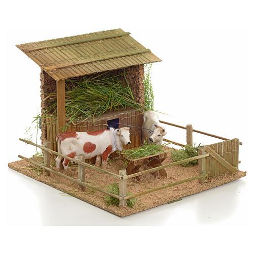 Mucche nella stalla movimento 2