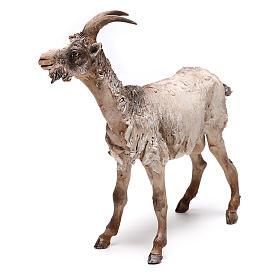 Pastor con burro 8cm movimiento Belén s3