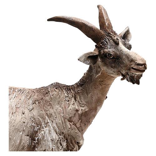 Pastor con burro 8cm movimiento Belén 2