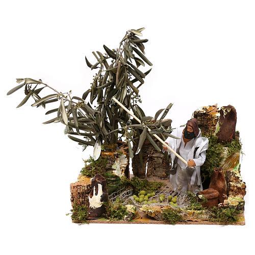 Homem na apanha da azeitona movimento presépio de Natal figuras altura média 12 cm 5
