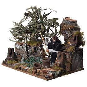 Man harvesting olives, 12cm animated nativity s2