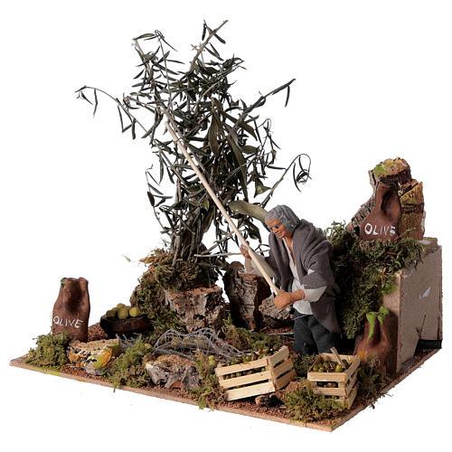 Man harvesting olives, 12cm animated nativity 2