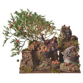 Man picking apples, 12cm animated nativity s1