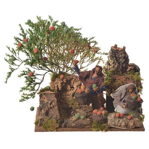 Man picking apples, 12cm animated nativity 1
