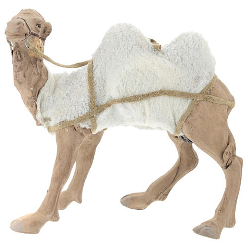 Animated camel 24cm Neapolitan Nativity 6