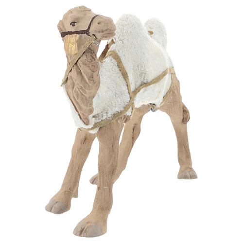 Animated camel 24cm Neapolitan Nativity 7