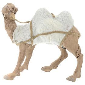 camello 24 cm moviemiento Belén Napolitano s6