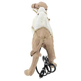 camello 24 cm moviemiento Belén Napolitano s9