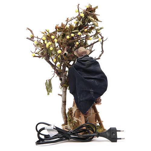 Uomo su scala con albero 14 cm movimento presepe Napoli 4