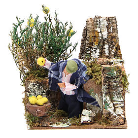 Animated nativity figurine 10cm man collecting lemons s1