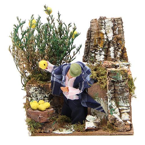 Animated nativity figurine 10cm man collecting lemons 1
