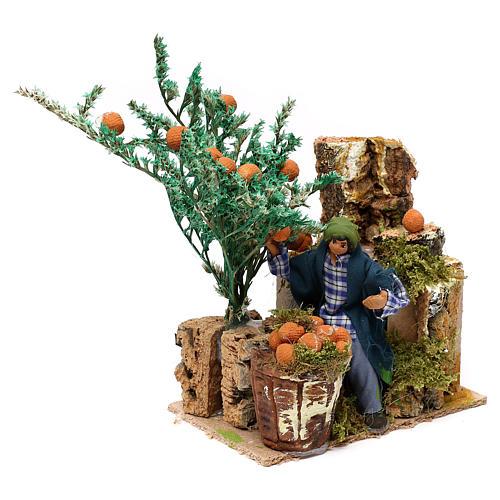 Man picking oranges measuring 10cm, animated nativity figurine 2