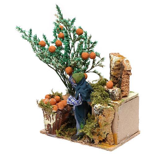 Man picking oranges measuring 10cm, animated nativity figurine 3