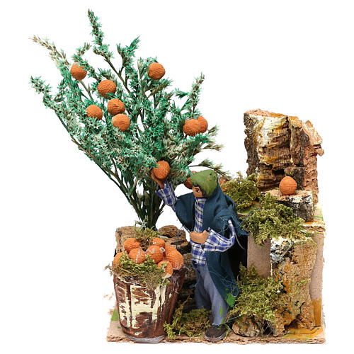 Man picking oranges measuring 10cm, animated nativity figurine 1