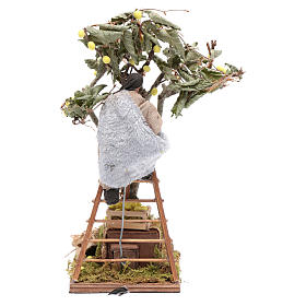 Moving man with ladder leaning on tree 12 cm Neapolitan nativity scene s4