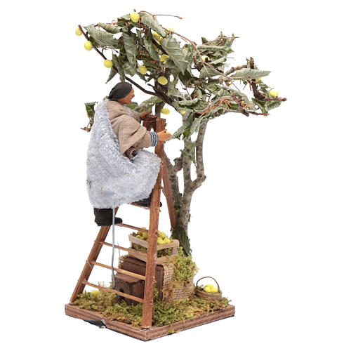Moving man with ladder leaning on tree 12 cm Neapolitan nativity scene 3