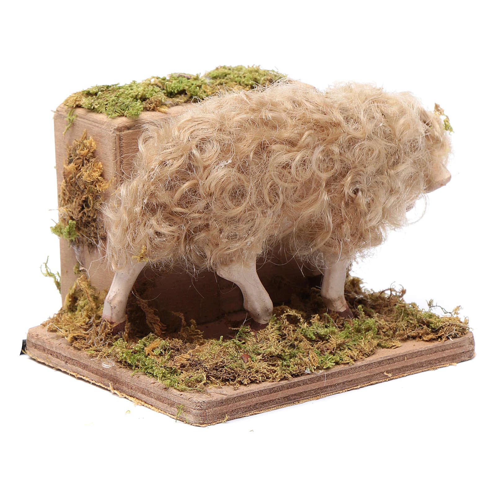Moving sheep 24 cm for Neapolitan nativity scene 4