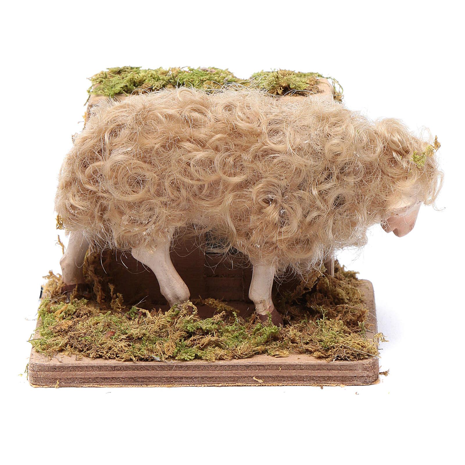 Pecorella in movimento presepe 24 cm di Napoli 4