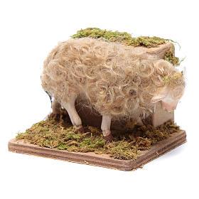 Moving sheep 24 cm for Neapolitan nativity scene