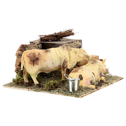 Neapolitan nativity scene moving cows with hay bale 12 cm 7