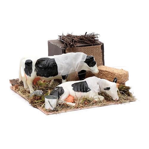 Mucche in movimento balle di paglia presepe di Napoli 12 cm 3