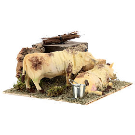 Neapolitan nativity scene moving cows with hay bale 12 cm s7