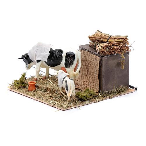 Neapolitan nativity scene moving cows with calf 12 cm 2