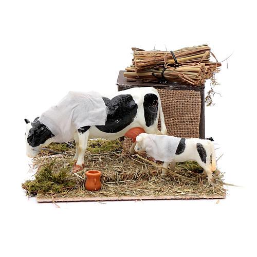 Mucca in movimento con cucciolo presepe di Napoli 12 cm 1