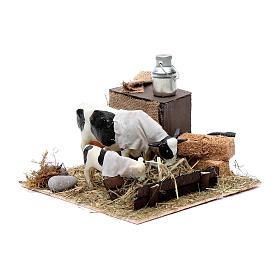 Mucca e cucciolo in mangiatoia movimento presepe di Napoli 12 cm s2