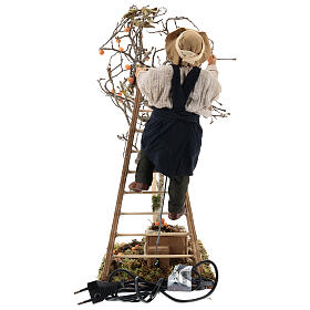 Neapolitan nativity scene man with tree and ladder in movement 24 cm s8
