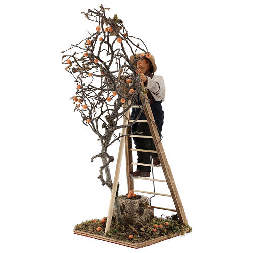 Neapolitan nativity scene man with tree and ladder in movement 24 cm 3