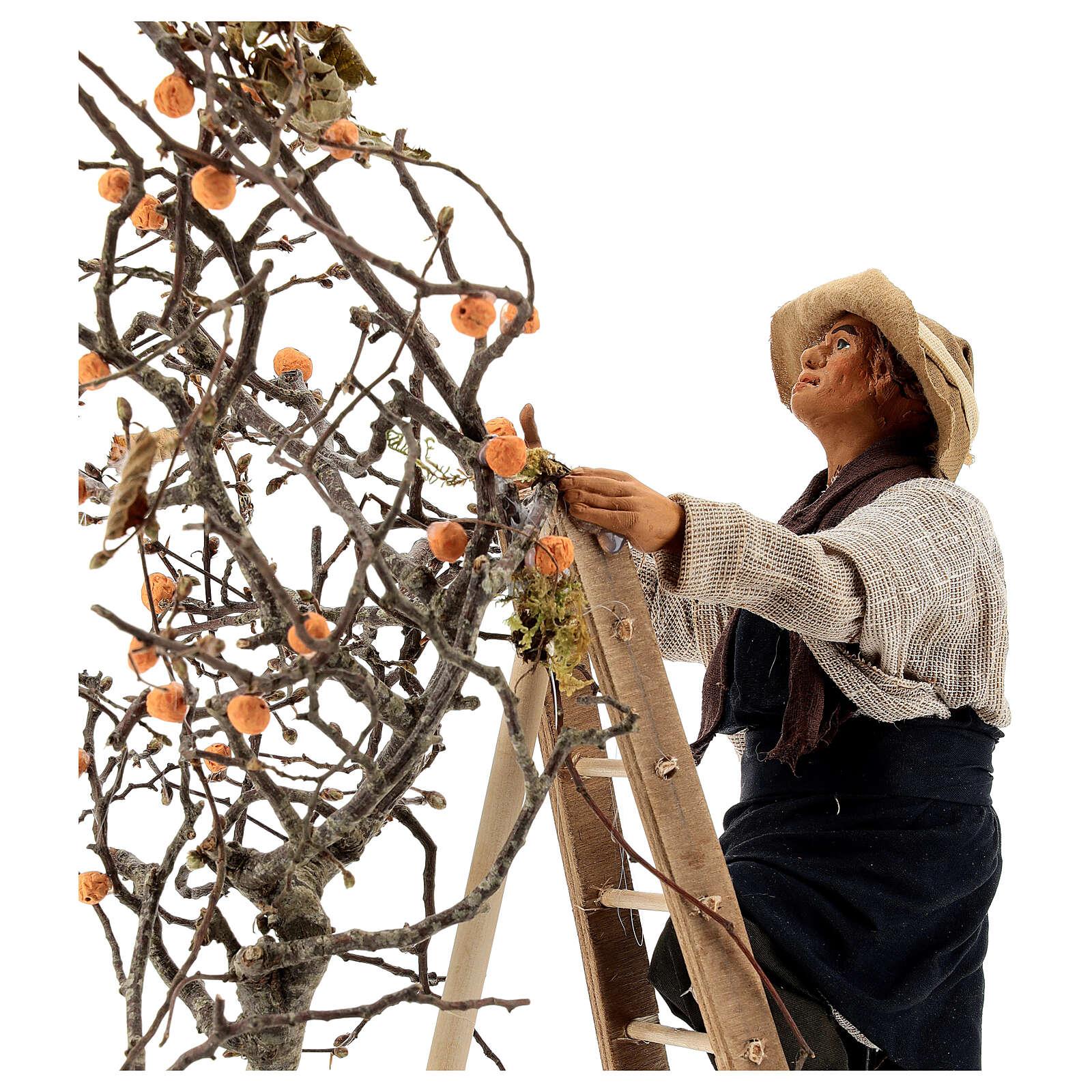 Hombre escalera con árbol movimiento 24 cm belén napolitano 4