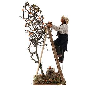Hombre escalera con árbol movimiento 24 cm belén napolitano s1