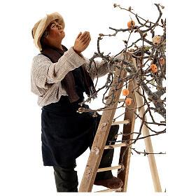 Hombre escalera con árbol movimiento 24 cm belén napolitano s4