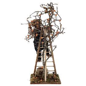 Hombre escalera con árbol movimiento 24 cm belén napolitano s7