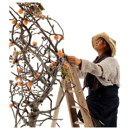 Hombre escalera con árbol movimiento 24 cm belén napolitano 2