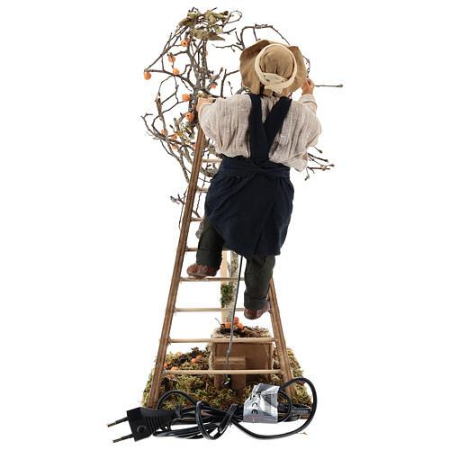 Hombre escalera con árbol movimiento 24 cm belén napolitano 8