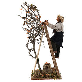 Neapolitan nativity scene man with tree and ladder in movement 24 cm s1