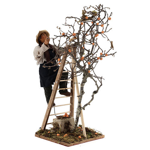 Neapolitan nativity scene man with tree and ladder in movement 24 cm 5