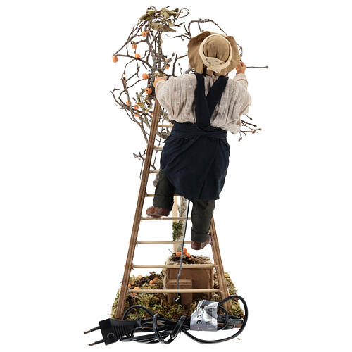 Neapolitan nativity scene man with tree and ladder in movement 24 cm 8