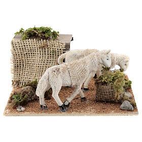 Pecore al pascolo movimento per presepe napoletano di 6 cm s1