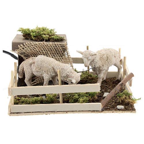 Moutons qui broutent dans un enclos mouvement crèche Naples 6 cm 1