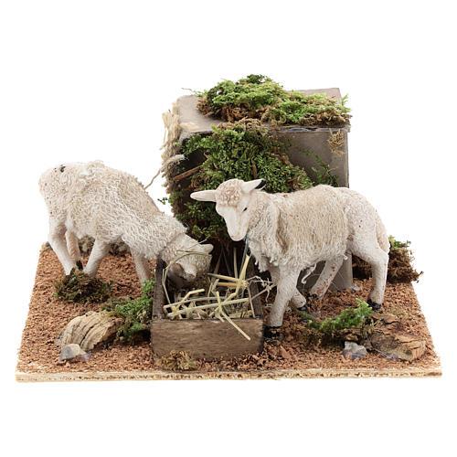 Pecore mangiano il fieno movimento presepe Napoli di 6 cm 1