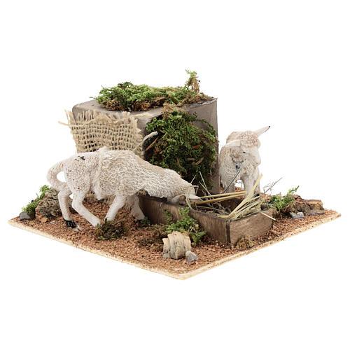 Pecore mangiano il fieno movimento presepe Napoli di 6 cm 3