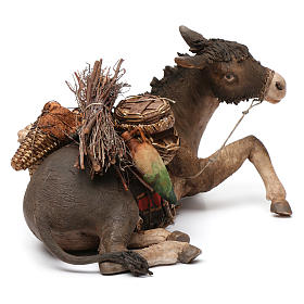 Donkey, 30cm in terracotta by Angela Tripi s4