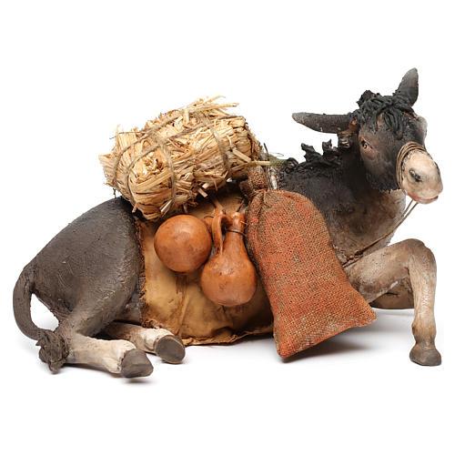 Donkey, 30cm in terracotta by Angela Tripi 7