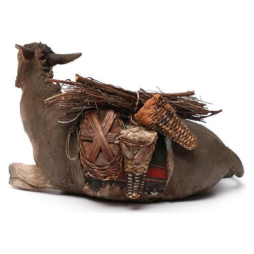 Donkey, 30cm in terracotta by Angela Tripi 5