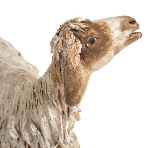 Nativity scene figurine, sheep 30 cm, Angela Tripi 8