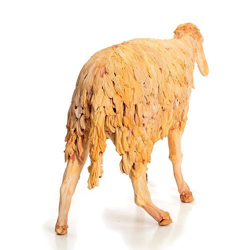 Nativity scene figurine, sheep 30 cm, Angela Tripi 6